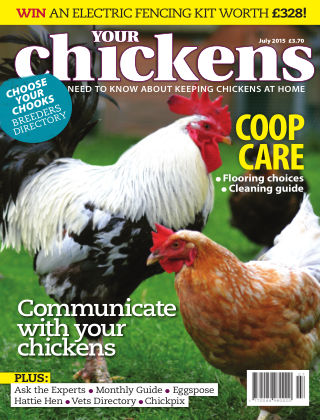 Your Chickens July 2015