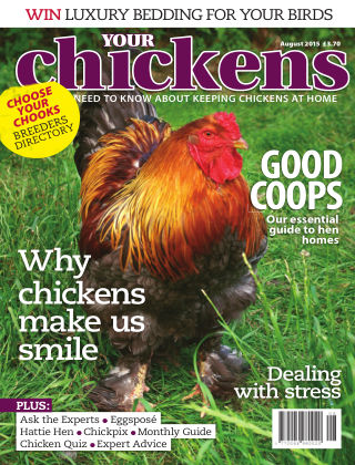 Your Chickens August 2015