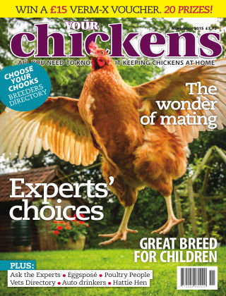 Your Chickens November 2015