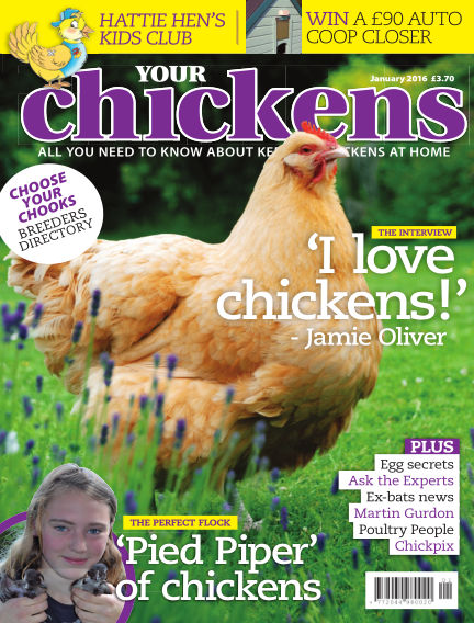 Your Chickens December 09, 2015 00:00