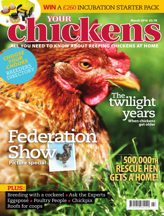 Your Chickens March 2016