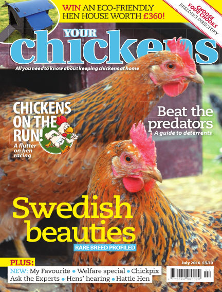 Your Chickens June 08, 2016 00:00