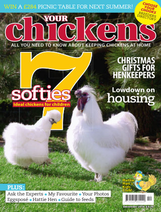 Your Chickens December 2016
