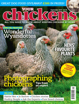 Your Chickens September 2017