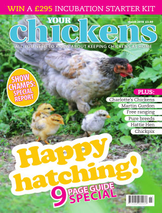 Your Chickens March 2018