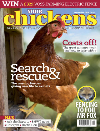 Your Chickens September 2018