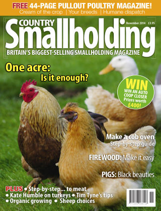 Country Smallholding November 2014