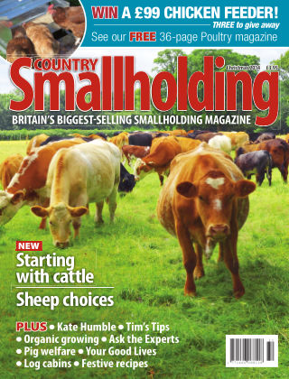 Country Smallholding Christmas 2014