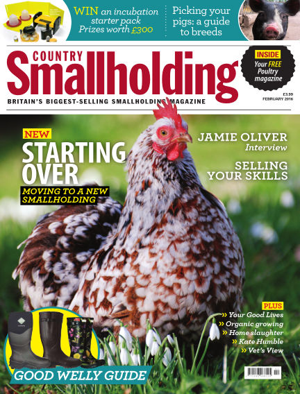 Country Smallholding January 14, 2016 00:00