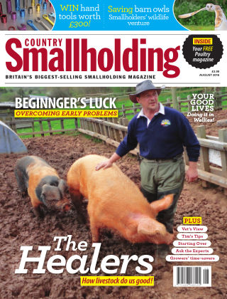 Country Smallholding August 2016