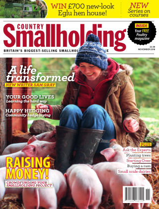 Country Smallholding November 2016