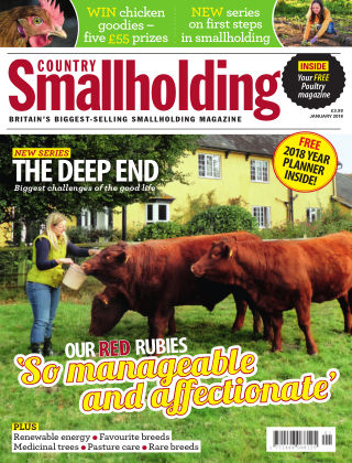 Country Smallholding January 2018