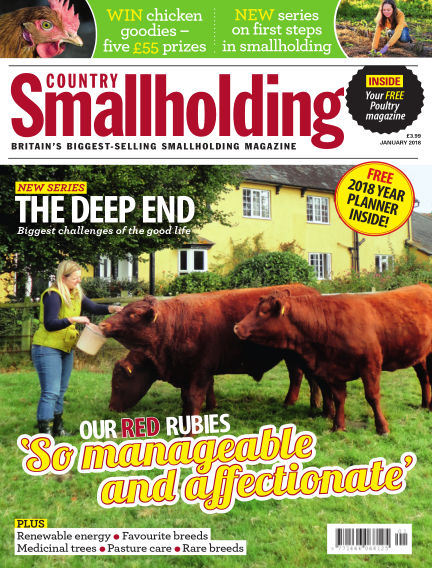 Country Smallholding December 14, 2017 00:00