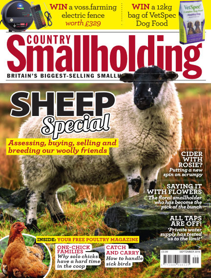 Country Smallholding August 23, 2018 00:00