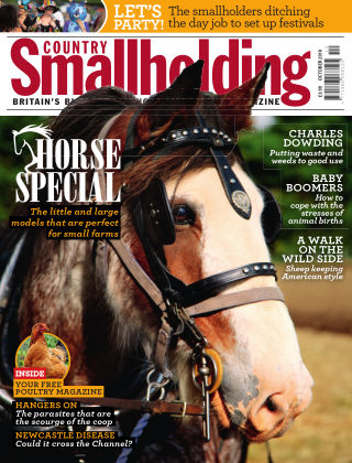 Country Smallholding October 2018