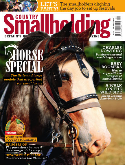 Country Smallholding September 20, 2018 00:00