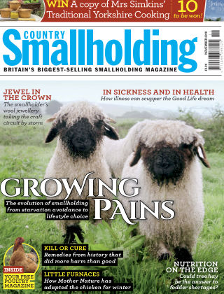 Country Smallholding November 2018
