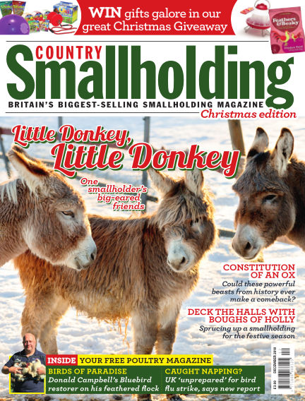 Country Smallholding November 15, 2018 00:00