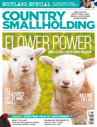 Country Smallholding July 2019