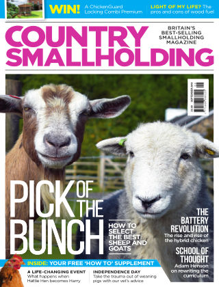 Country Smallholding September 2019