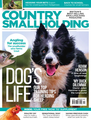Country Smallholding February 2020