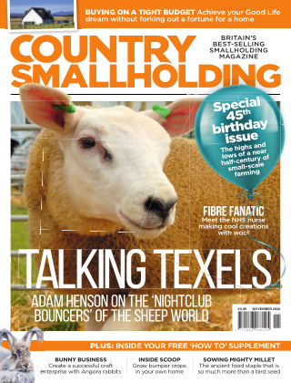 Country Smallholding November 2020