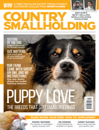 Country Smallholding January 2021