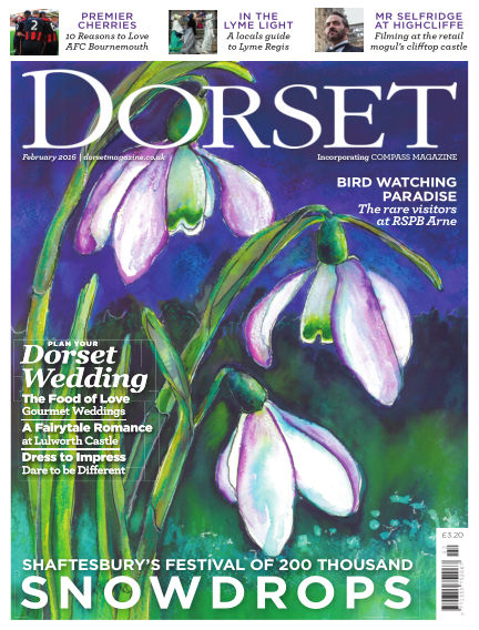 Dorset January 21, 2016 00:00
