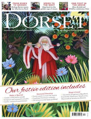 Dorset December 2016