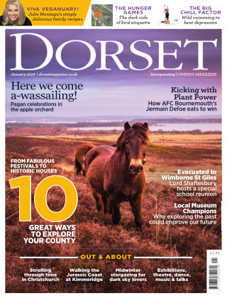 Dorset January 2018