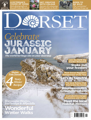 Dorset January 2019