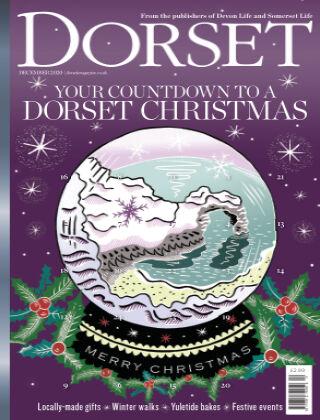 Dorset December 2020