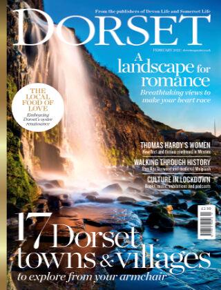 Dorset February 2021