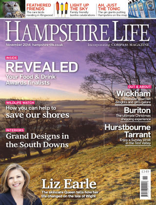 Hampshire Life November 2014