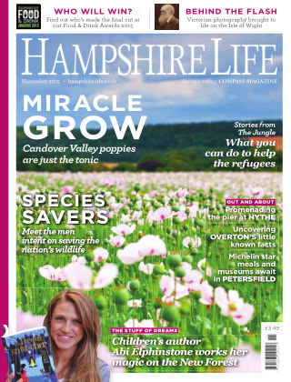 Hampshire Life November 2015