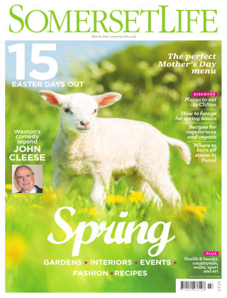 Somerset Life March 2016