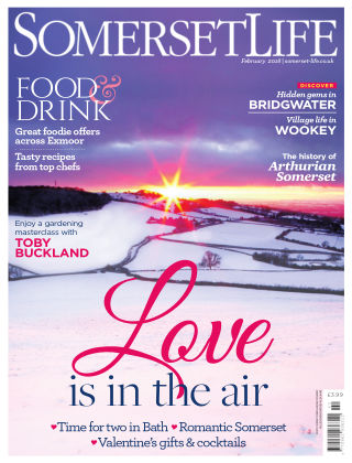 Somerset Life February 2018