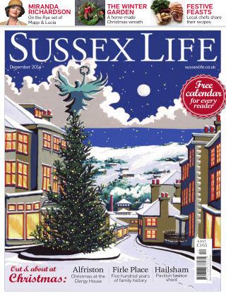 Sussex Life December 2014