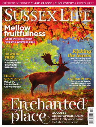 Sussex Life October 2017