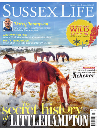 Sussex Life January 2019