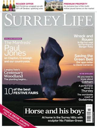Surrey Life November 2014
