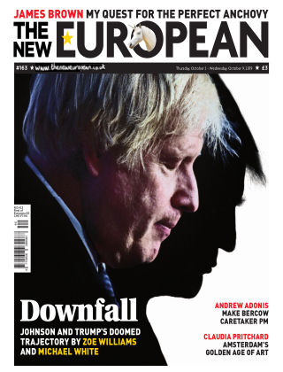The New European Issue 163 - 03/10/19
