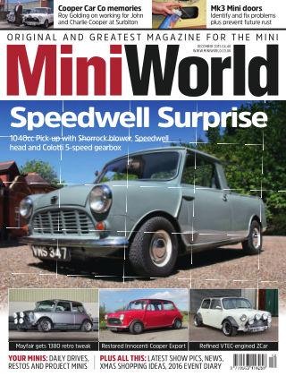 Mini World Speedwell Surprise