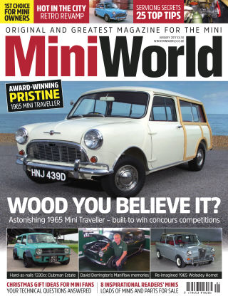 Mini World January 2017