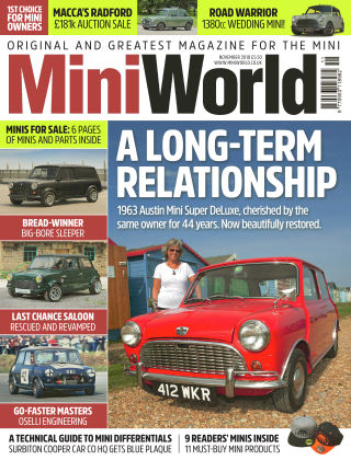 Mini World November 18