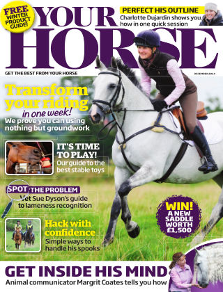 Your Horse December 2014