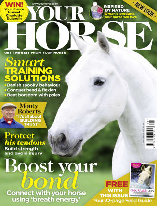 Your Horse November 2015