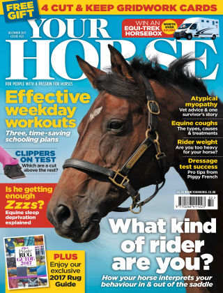 Your Horse Issue 432