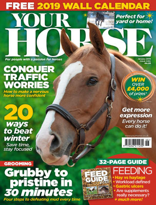 Your Horse Issue 446