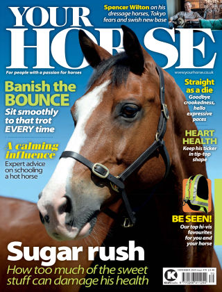 Your Horse Issue 470